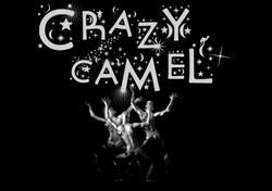 Crazy_web