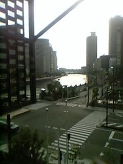 花たち女たち大阪で恋組